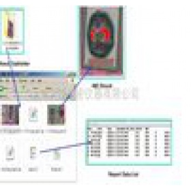 铜线键合封装测量系统