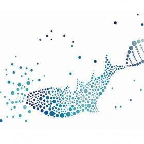 INTAVIS FishGenePro实验鱼类管理系统软件
