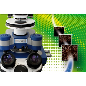 JPK Nanowizard 高速原子力显微镜
