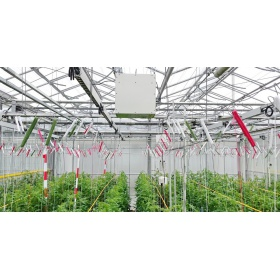 植物群体光合连续监测系统CropObserver