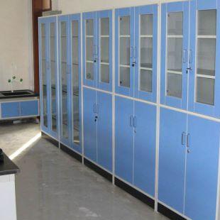 全木储存柜 全木药品柜 钢木器皿柜 实验室存药柜规格