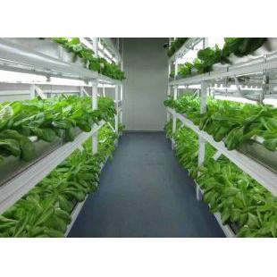 植物工厂kr--Z2000