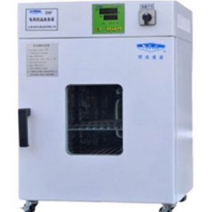 DNP-9052 电热恒温培养箱