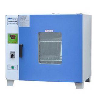 上海龍躍電熱恒溫干燥箱GZX-DH-300-BS-II