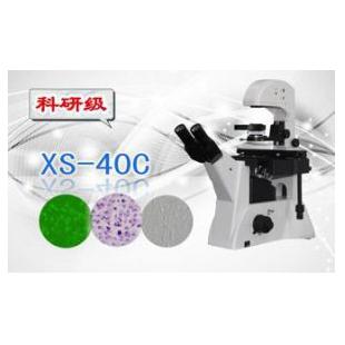 三目倒置生物显微镜XS-40C