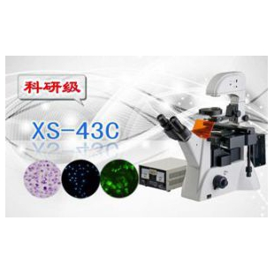 三目倒置荧光显微镜XS-43C