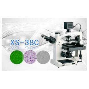 三目倒置生物显微镜XS-38C