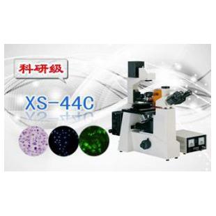 三目倒置熒光顯微鏡XS-44C