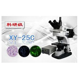 三目荧光显微镜XS-25C