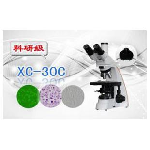 三目相衬显微镜XS-30C