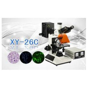 三目荧光显微镜XS-26C