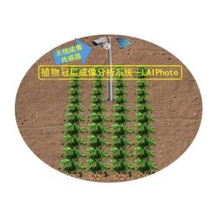 植物冠层成像分析系统MC-LAIPhoto