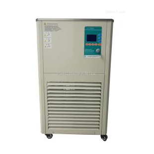 DHJF-2020低溫恒溫攪拌反應槽