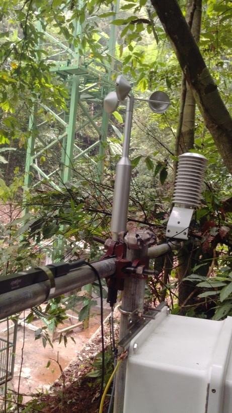 补蚌塔吊森林梯度观测系统项目完成!