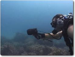 diverwreceiveruw3.jpg