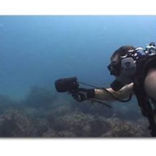 UDR水下设备潜水员信号接收器
