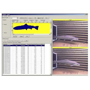 VAKI鱼道观测计数分析系统