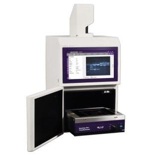 美国UVP GelDoc-It Ts3凝胶成像分析系统