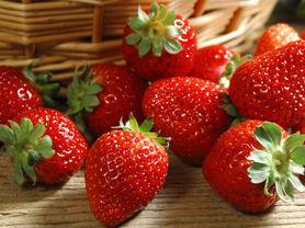 异形草莓打了药?