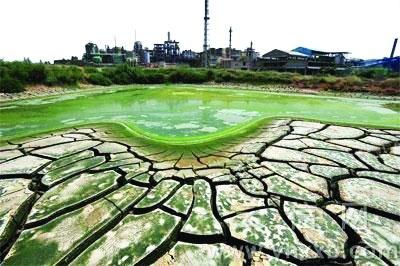 深度解读:中国重金属耕地修复之困