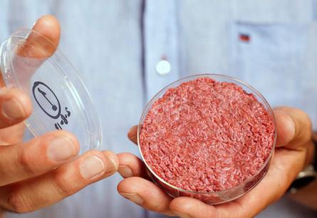 逆天研究?实验室肉制品或将成为美国最大产业之一