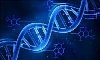 无懈可击的DNA检测技术 为何频频制造冤假错案?
