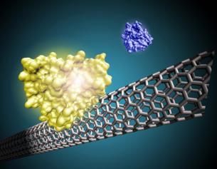 乌克兰在荧光纳米材料研究方面取得新成果