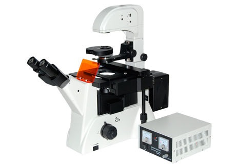 华南理工大学倒置荧光显微镜购置中标公告