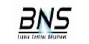 美国BNS/Boulder Nonlinear Systems