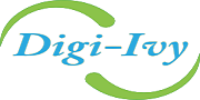美国Digi-IVY/Digi-IVY