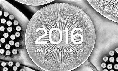 《自然》评出2016重大科学事件  我国成果增多