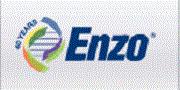 美国Enzo/Enzo