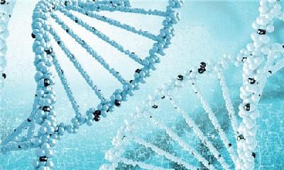 基因检测已全面叫停  顶风检测人类基因现象仍存在