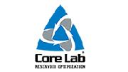 美国岩心/corelab