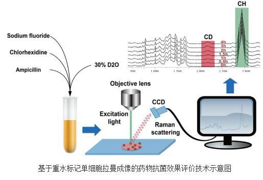拉曼组技术将成为耐药性快检新手段与新标准之一