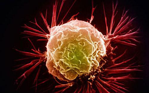 一管血实现癌症早期诊断