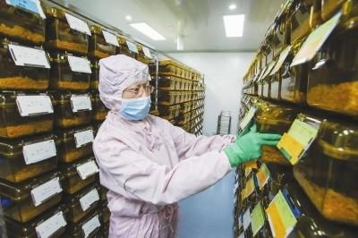 上海科学家发起并领衔国际大科学研究计划