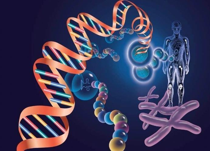 美首台家用基因检测仪获准上市