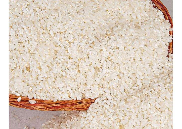 """让柬埔寨香米在""""一带一路""""上飘香——""""中柬食品工业联合实验室""""成长"""