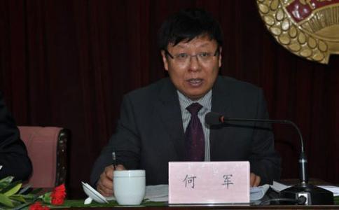 新疆墨玉县委原书记何军被双开 不履行反恐责任