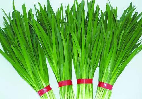 内蒙古4批次韭菜、淡水小虾不合格 涉及农兽药残留