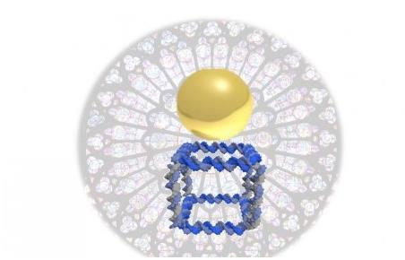 新型数字生物转换器可进行DNA生物打印