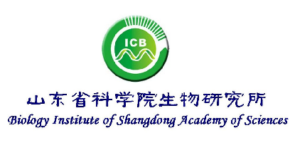 山东生物所/Biology Institute of Shangdong