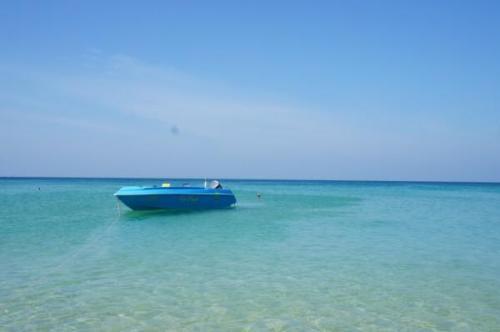 新西兰16个海滩水质检测出健康安全风险