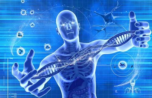 全球首例人体内基因编辑试验实施