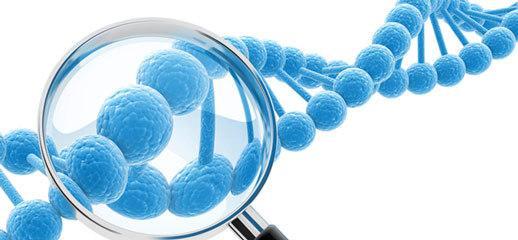 基因检测可揭秘人类基因密码