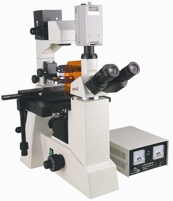 山东大学齐鲁医学院双光子激光共聚焦显微镜系统采购项目中标公告