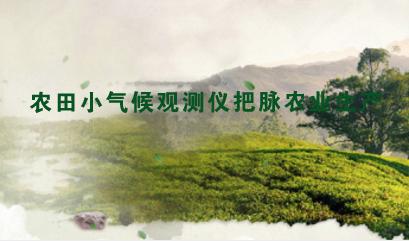 农田小气候观测仪把脉农业生产 助力智慧农业发展