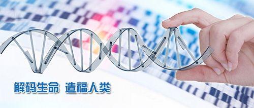 国家政策相继加持 基因测序市场一触即发