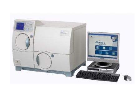 细菌分析系统